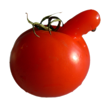 Rude tomato