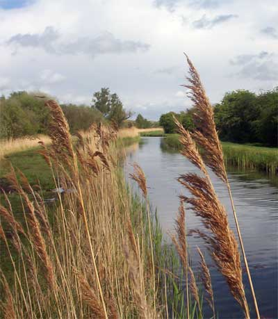 Wicken Fen National Nature Reserve (c) Cat James